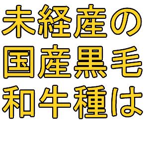 Cocolog_oekaki_2013_12_19_23_46